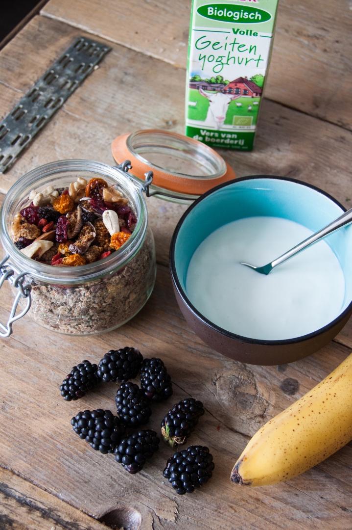Granola Superfoods with Goats Yogurt // Rosalie's Recipes - rosalieruardy . c o m