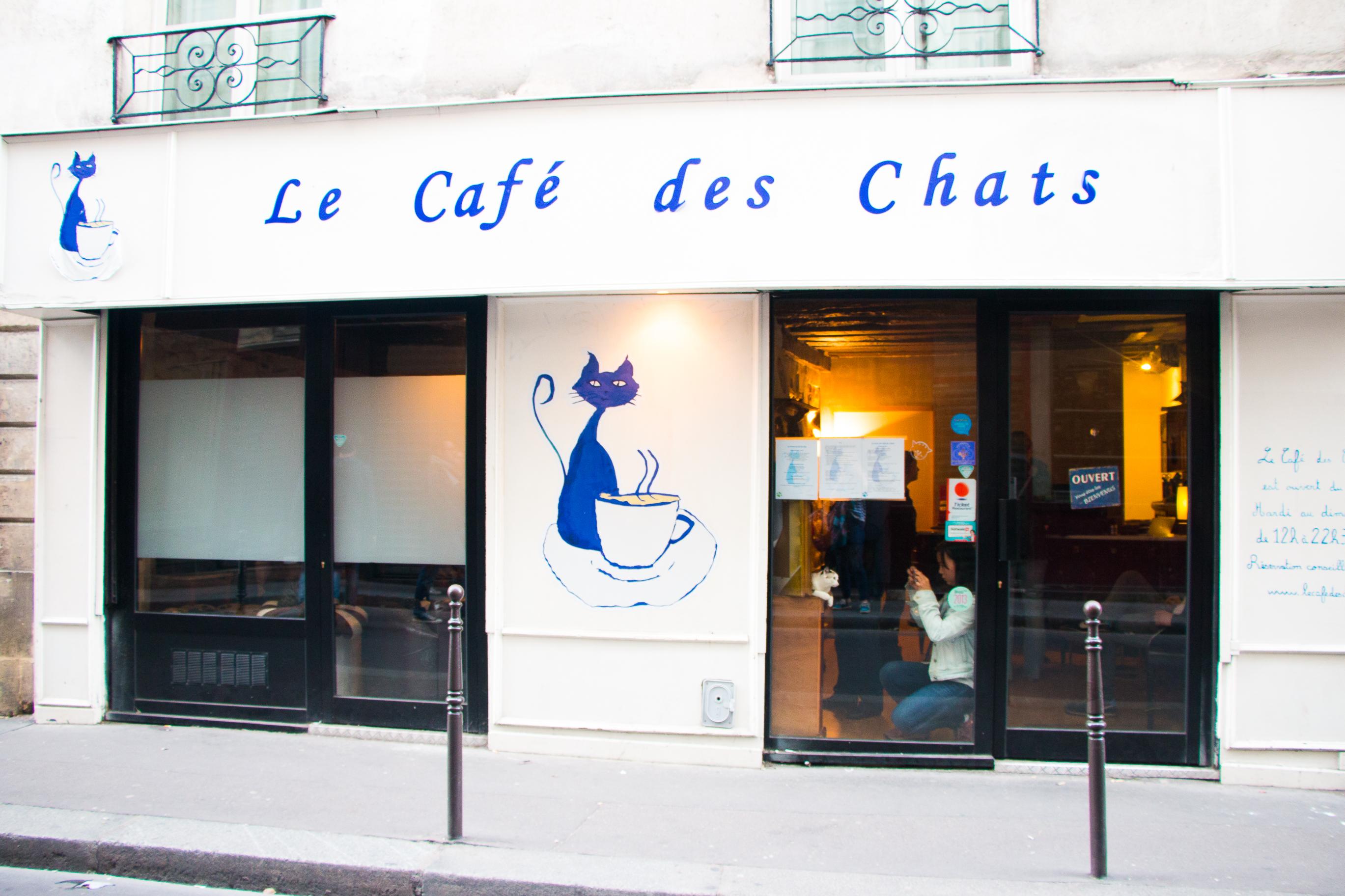 Travel stories hidden hotel paris rosalieruardy com food health mi - Le cafe des bains rennes ...